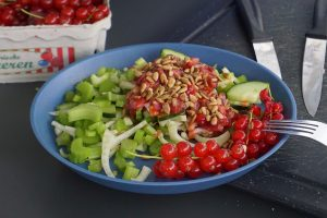 Fenchel-Gurke-Selleriesalat mit Johannisbeerendressing